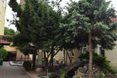 Ogród na terenie zakładu
